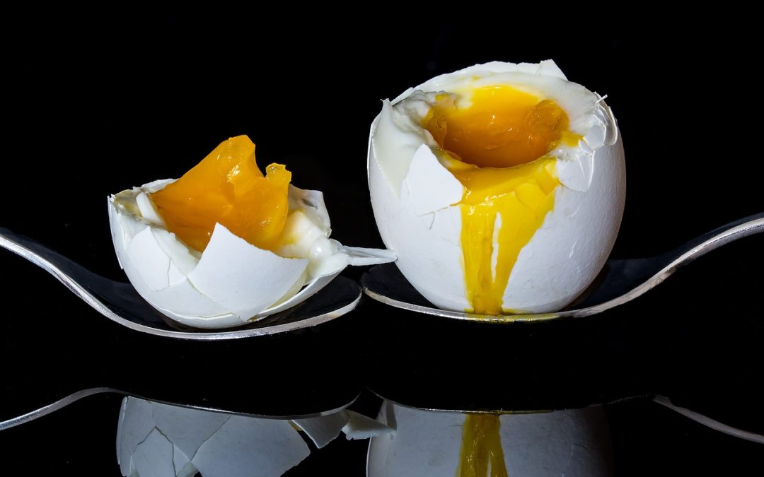 Eggs: Health Food or Best Avoided?