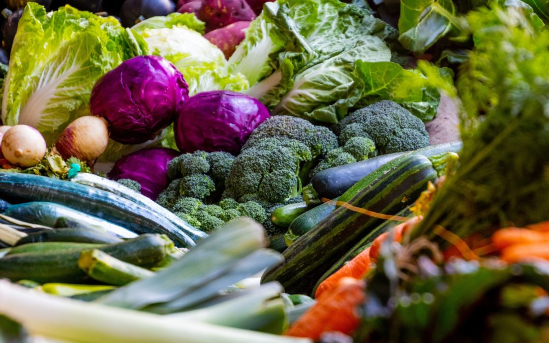 An Overview of Food as Medicine to Fight Disease